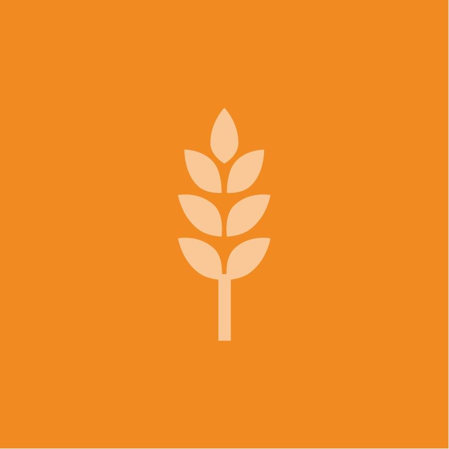 Generic Placeholder Orange 1