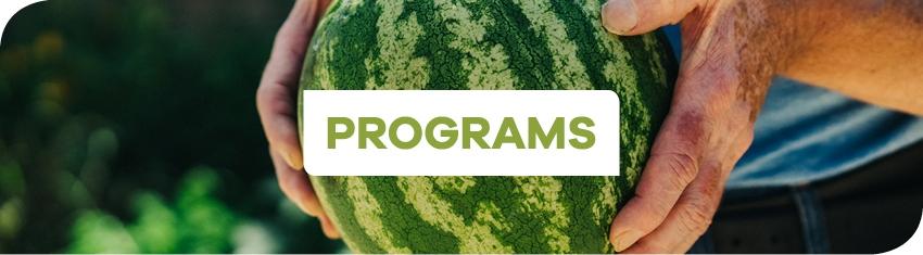 Wh Programs