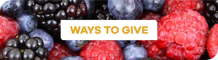 Wh Ways To Give1